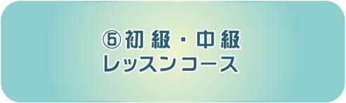 icon_lesson05
